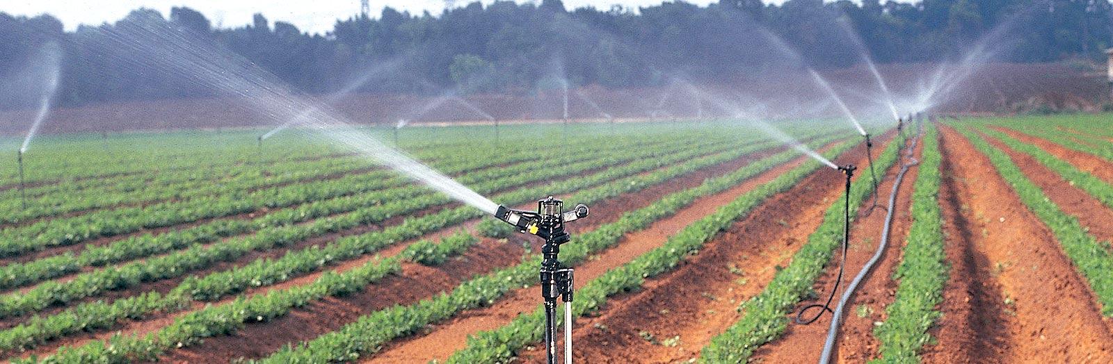 روشهای کود دهی در سیستم آبیاری بارانی